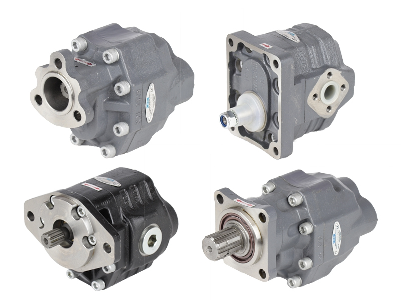 Gear Pumps - Cast Iron Body